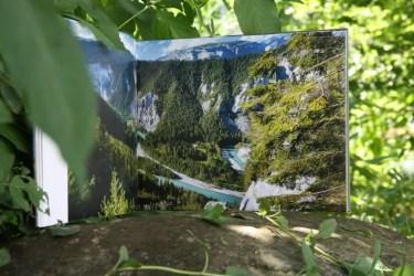 FaszinationBergwälder (5)
