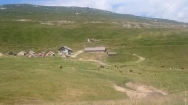 Altitrail JMEditions 2014 - Itineraire7 - trail below Posettes