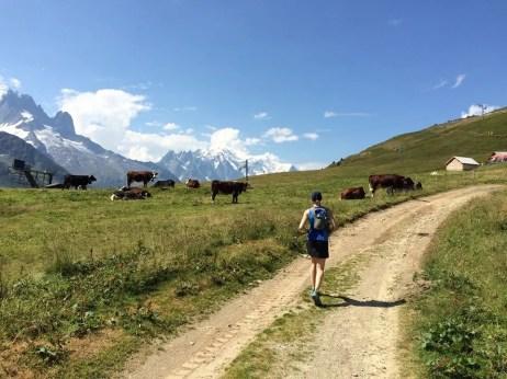 Altitrail JMEditions 2014 - Itineraire7 - trail