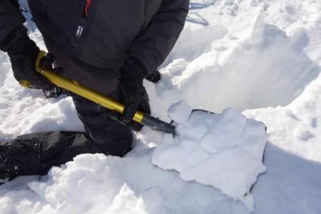Black Diamond Lynx Snow Shovel 1