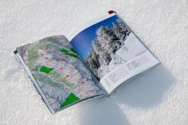 Freeride Guide Davos Klosters-6