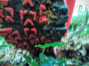 Jack Wolfskin Trail Excite Texapore Low W_2