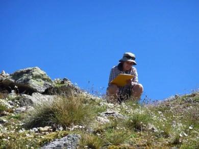 Sonja Wipf (Forschungsgruppe Gebirgsökosysteme SLF und Mitautorin der Studie) notiert die Pflanzenarten auf dem Mot dal Gajer (Engadin, GR). Bild: Naturen/Sarah Burg