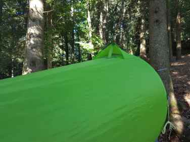 Flying_Tent_Grasshopper-10