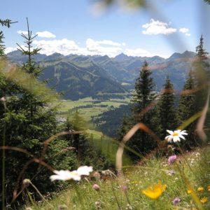 Naturprodukt Bio Airspray