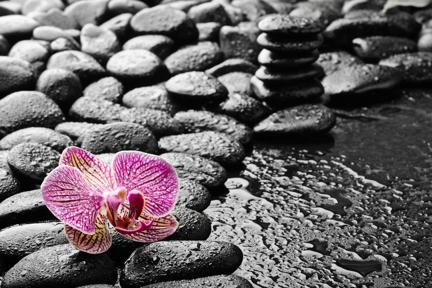 Um Zen zu leben, benötigst du kein japanisches Kloster - integriere die folgenden Übungen einfach in deinen Alltag!
