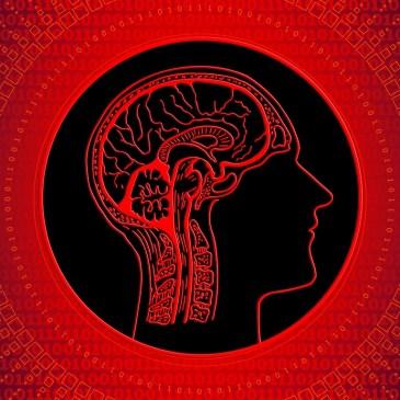 Wie Meditation auf das Gehirn wirkt