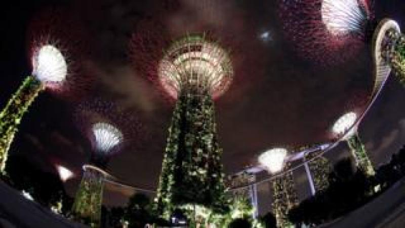 """A general view of giant concrete tree-like structures called """"Supertrees"""" before the lights are dimmed to mark Earth Hour, at the Gardens by the Bay in Singapore"""