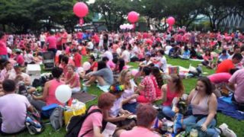 A crowd dressed in pink gathers at Hong Lim Park in Singapore to kick off the annual 'Pink Dot' event in a public show of support for the LGBT community in Singapore on June 13, 2015.