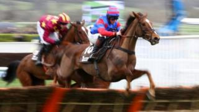 Step Back ridden by J.E Moore clears a hurdle in the Albert Bartlett Novices' Hurdle during Cheltenham Gold Cup Day