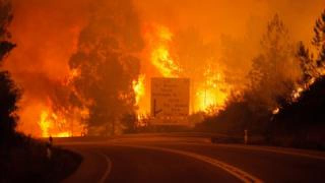 Flames raging around a road in Pedrogao Grande