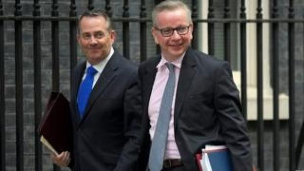 Liam Fox and Michael Gove