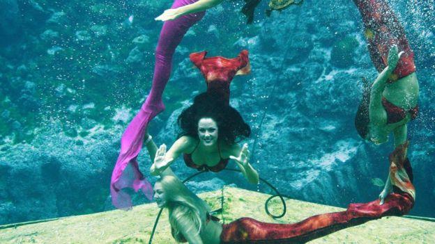 Sirenas de Weeki Wachee Springs, empleadas oficiales del estado de Florida.