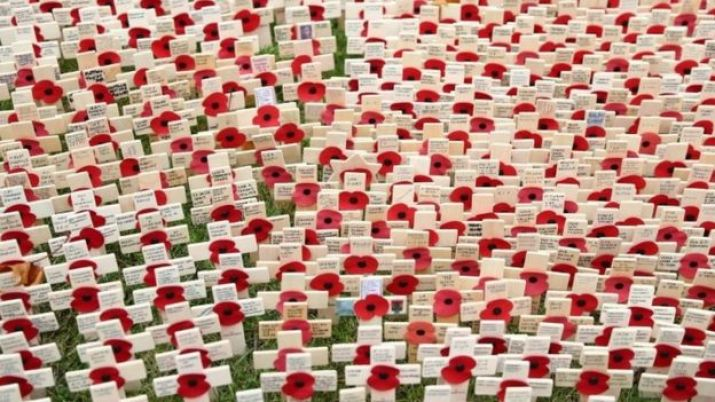 Little crosses with poppies on are displayed at the Field of Remembrance at Westminster Abbey in central London