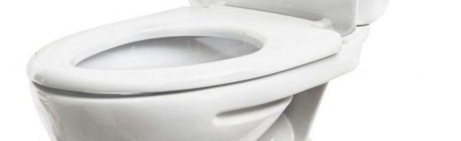 Toilet seat - generic shot