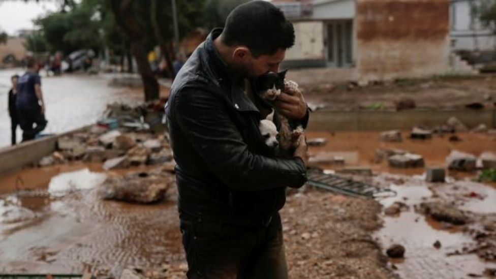 A local, carrying a dog in his jacket, holds a cat he saved from a tree
