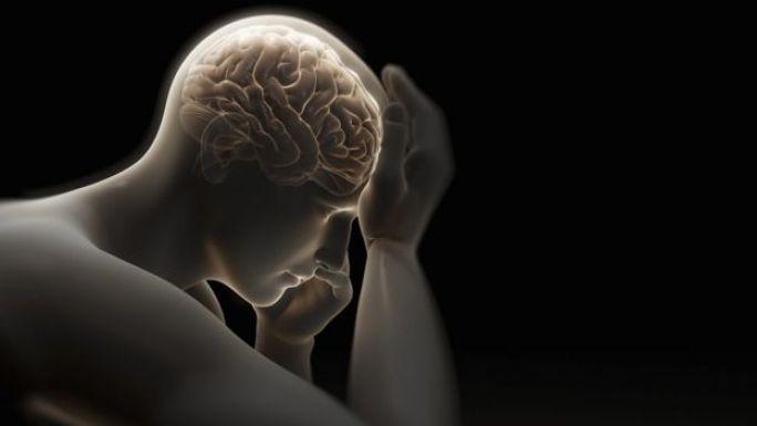 Imagen de un adulto y su cerebro