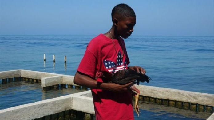 Joven con un gallo de pelea