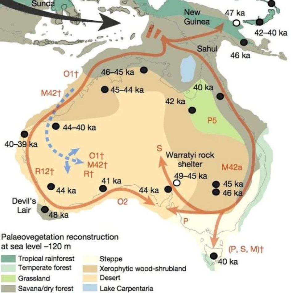A map showing the movements of the first Aboriginal Australians