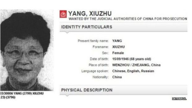Details of Chinese suspect Yang Xiuzhu on the Interpol website