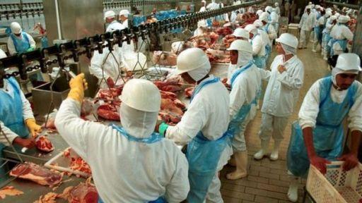 Resultado de imagem para operação carne fraca