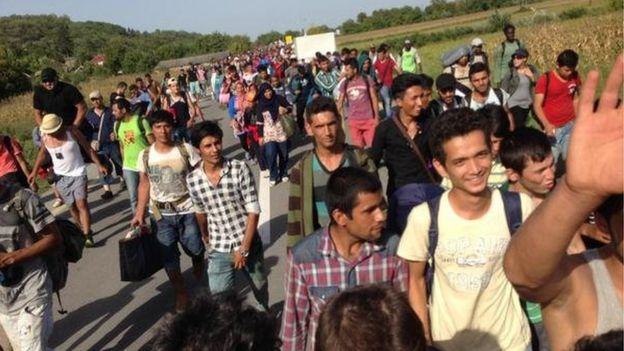 Migrants who have pushed through the police line on Croatia border at Bezdan (17 September 2015)