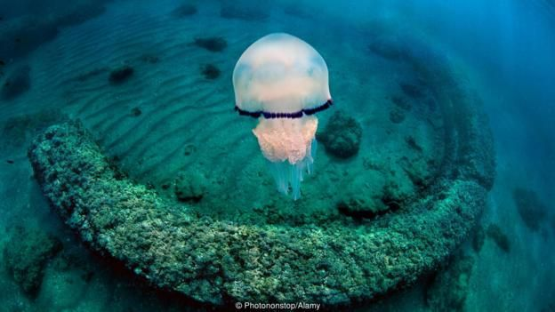 Vestigios romanos bajo el agua