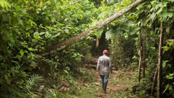 Víctor Zambrano caminando en la selva
