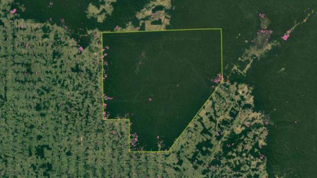 Desmatamento na TI Sete de Setembro
