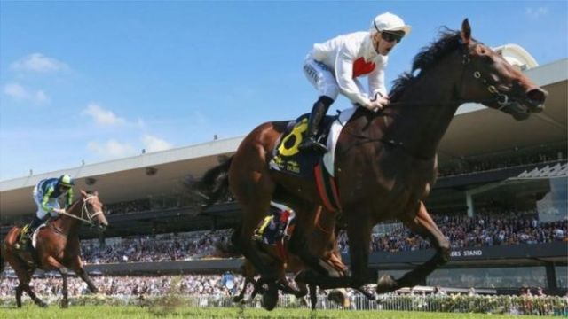 A picture of Sydney horse racing in Australia