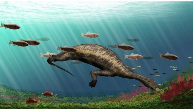 Fossils shed light on bizarre reptile