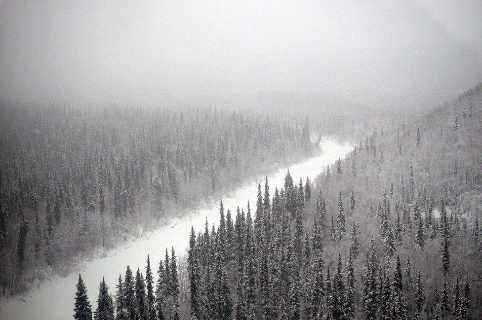 The Alaskan landscape