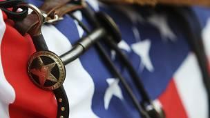 Estrella de Texas y bandera