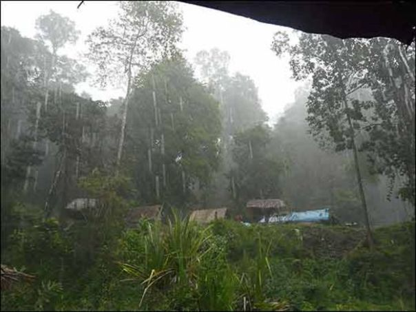 Comunidad Orang Asli