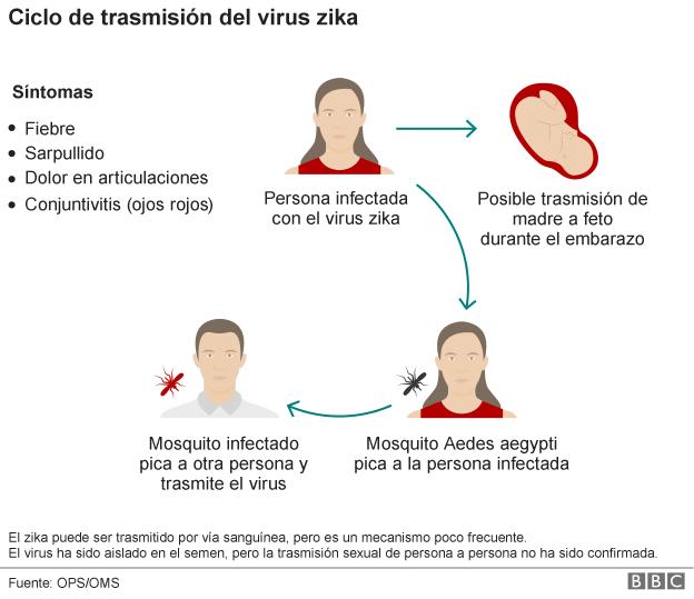 Ciclo de transmisión del virus Zika.