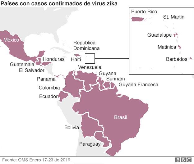 zika: casos confirmados