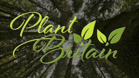BBC One - Countryfile - Take part in Plant Britain