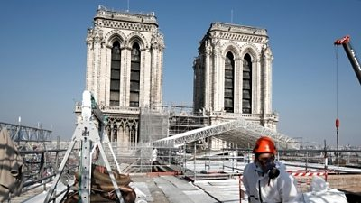 Rebuilding Notre-Dame cathedral… with 1,000 oak trees #world #BBC_News
