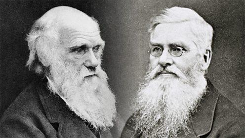 Darwin ve Wallace