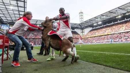 Anthony Ujah  (right) and Hennes VIII the goat