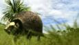 A large prehistoric glyptodont walking through grassland