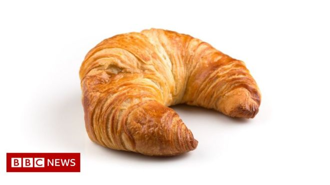 Mystery tree beast turns out to be croissant #world #BBC_News