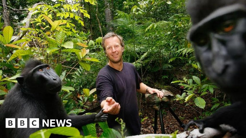 Monkey selfie legal fight settled