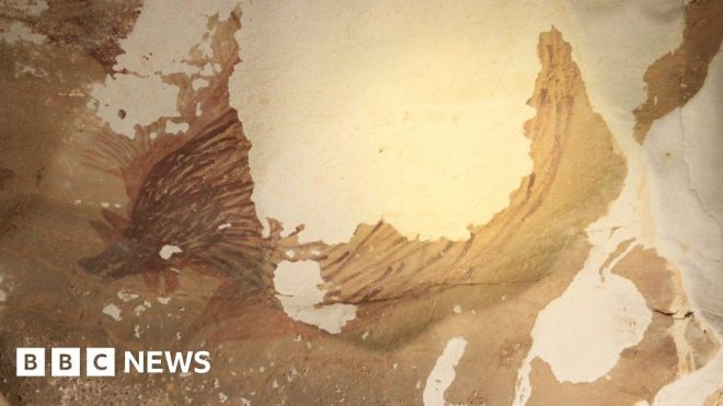 Indonesia: Climate change destroying world's oldest animal painting #world #BBC_News