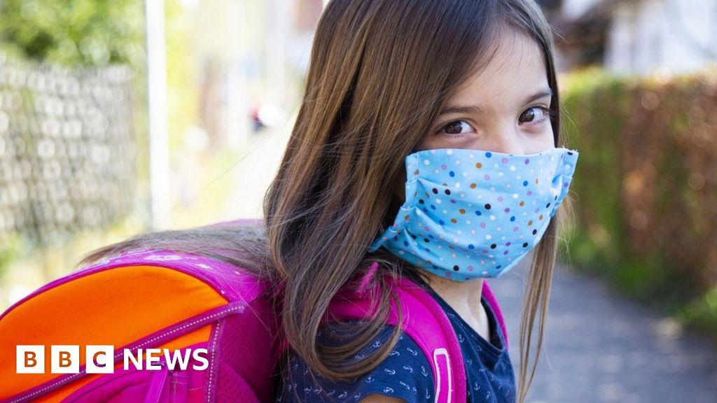 Testing 'may not prevent new coronavirus wave' when schools reopen
