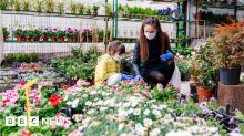 116368579 gardencentre gettyimages 1216570391