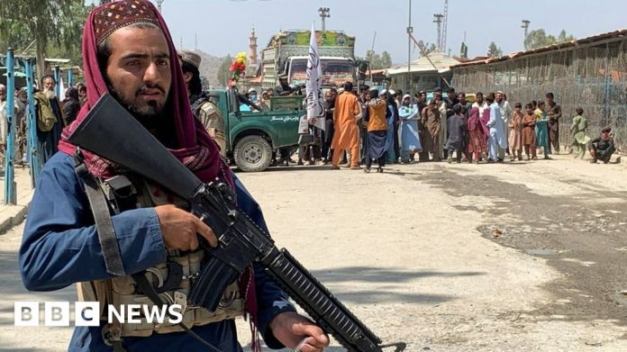 Watch Violence surges in Pakistan's tribal belt as Taliban, IS-Okay go on assault – BBC English News