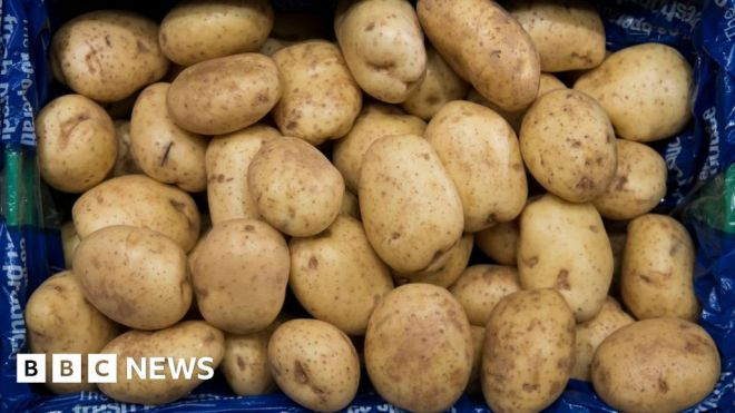 EU to allow post-Brexit UK farm produce exports #world #BBC_News