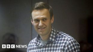 Putin critic Navalny could 'die within days', say doctors #world #BBC_News