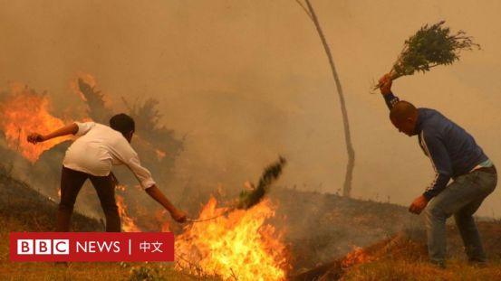 喜马拉雅山脉的野火记录令人担忧-BBC新闻